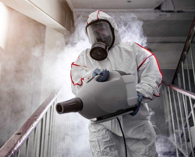 уничтожение крыс в домах в Москве