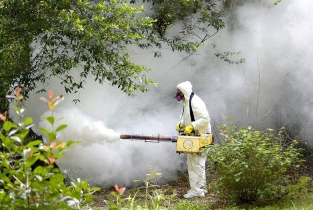 уничтожение комаров на участке