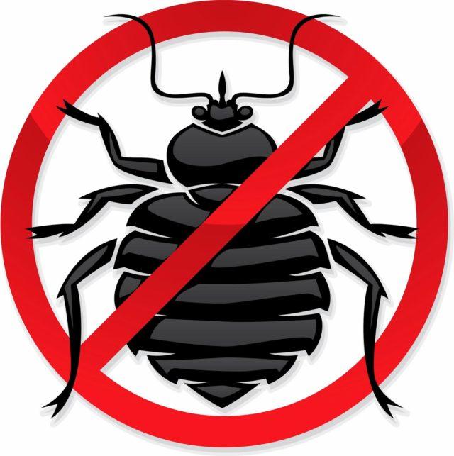 уничтожение тараканов в москве с гарантией