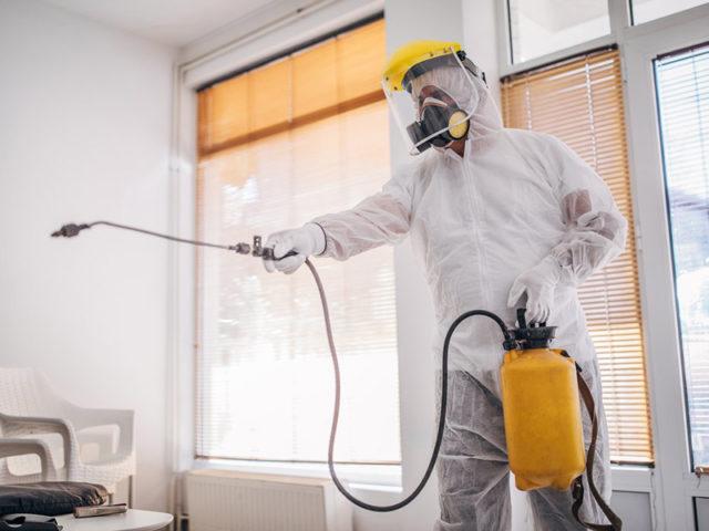 Устранение запахов в квартире